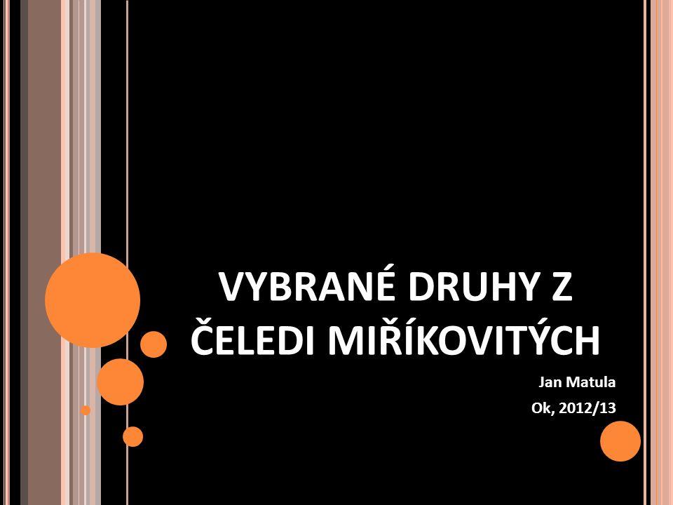 VYBRANÉ DRUHY Z ČELEDI MIŘÍKOVITÝCH Jan Matula Ok, 2012/13