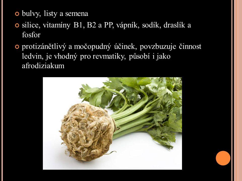 bulvy, listy a semena silice, vitamíny B1, B2 a PP, vápník, sodík, draslík a fosfor protizánětlivý a močopudný účinek, povzbuzuje činnost ledvin, je vhodný pro revmatiky, působí i jako afrodiziakum