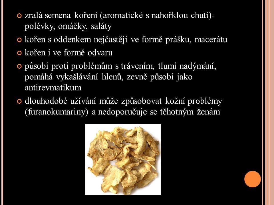 zralá semena koření (aromatické s nahořklou chutí)- polévky, omáčky, saláty kořen s oddenkem nejčastěji ve formě prášku, macerátu kořen i ve formě odvaru působí proti problémům s trávením, tlumí nadýmání, pomáhá vykašlávání hlenů, zevně působí jako antirevmatikum dlouhodobé užívání může způsobovat kožní problémy (furanokumariny) a nedoporučuje se těhotným ženám