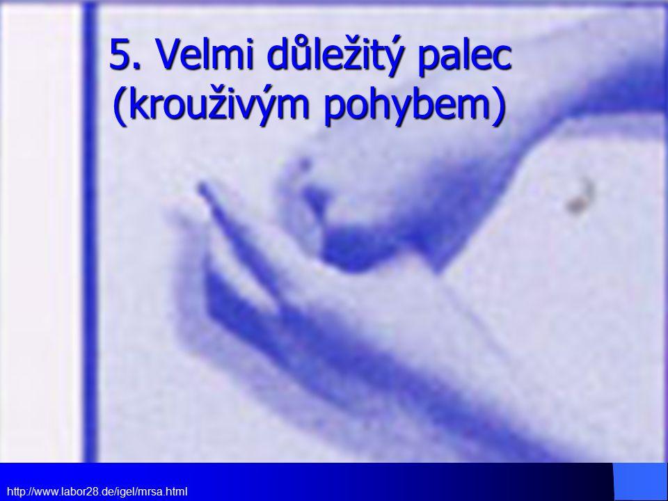 5. Velmi důležitý palec (krouživým pohybem)
