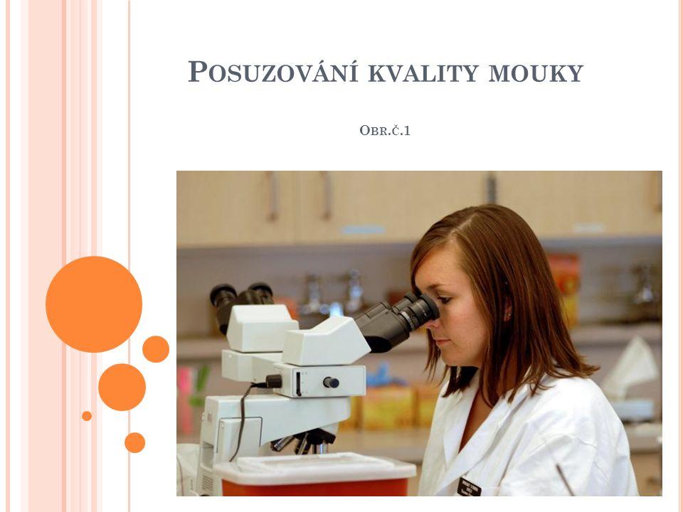 P OSUZOVÁNÍ KVALITY MOUKY O BR. Č.1