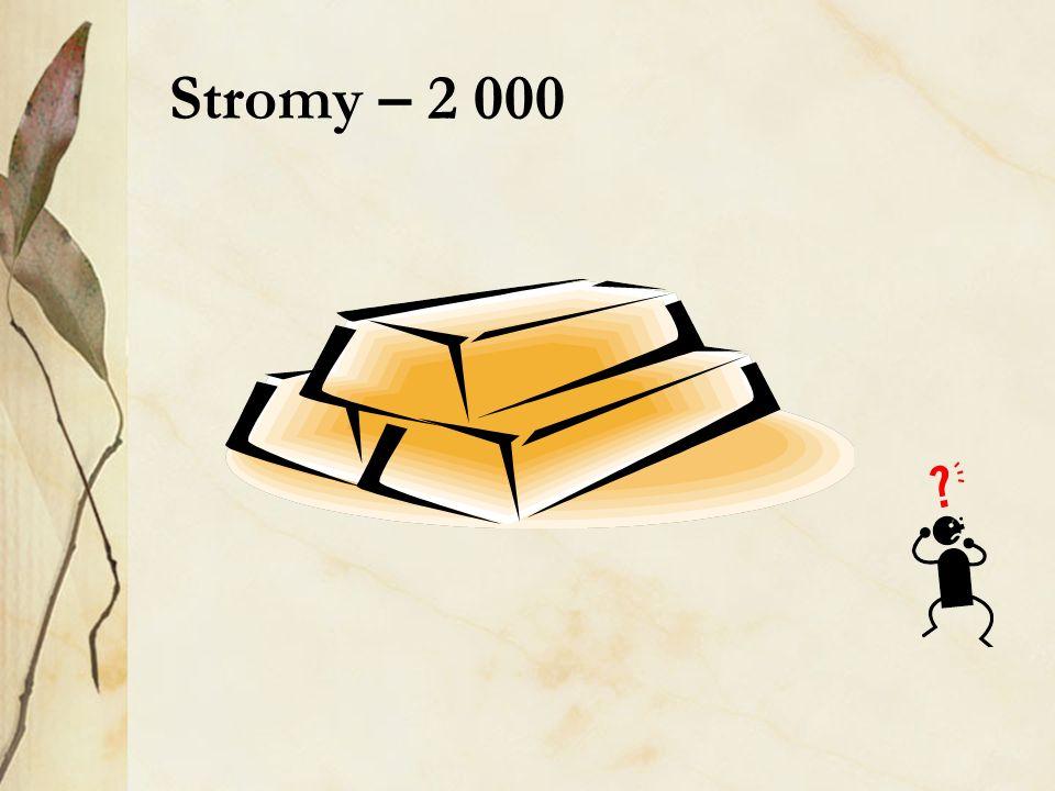 Stromy – 2 000