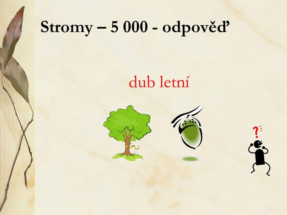 Stromy – 5 000 - odpověď dub letní