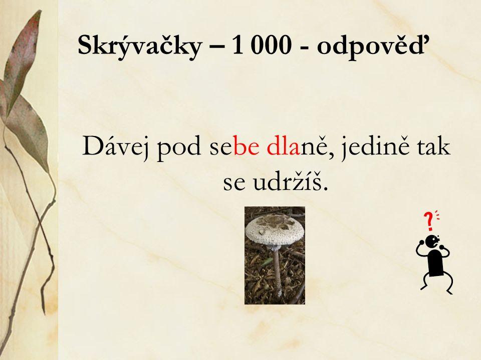 Skrývačky – 1 000 - odpověď Dávej pod sebe dlaně, jedině tak se udržíš.