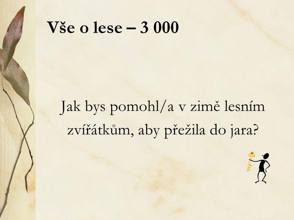 Skrývačky – houby – 4 000 Václav Kalista je můj strýček z Prahy.