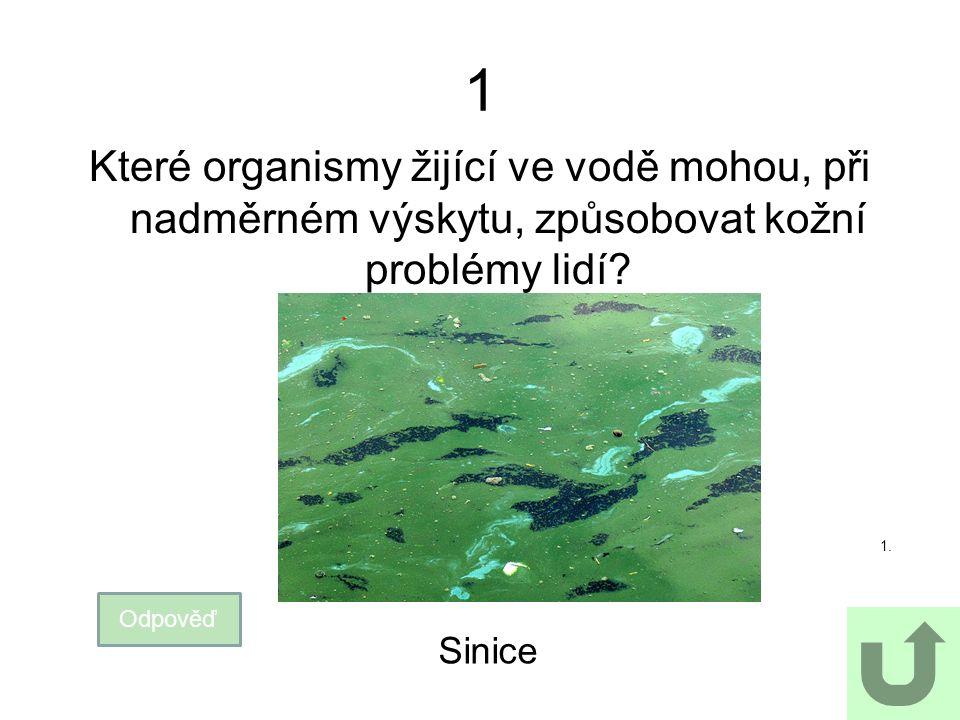 2 K čemu se v mikrobiologii využívá agar? Odpověď Agar se využívá ke kultivaci mikroorganismů. 2.