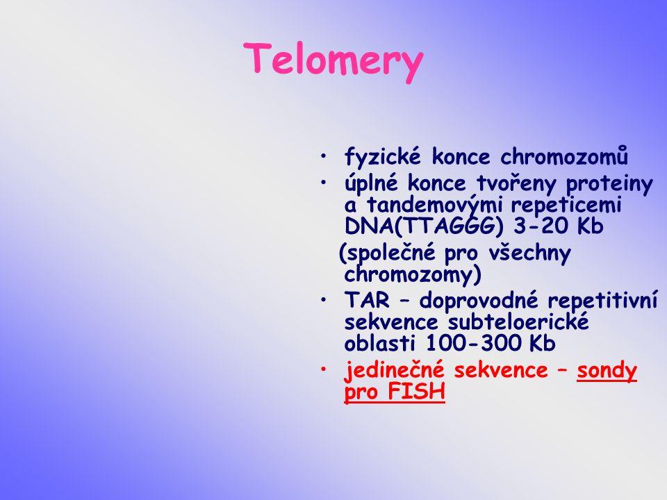 Telomery fyzické konce chromozomů úplné konce tvořeny proteiny a tandemovými repeticemi DNA(TTAGGG) 3-20 Kb (společné pro všechny chromozomy) TAR – doprovodné repetitivní sekvence subteloerické oblasti 100-300 Kb jedinečné sekvence – sondy pro FISH