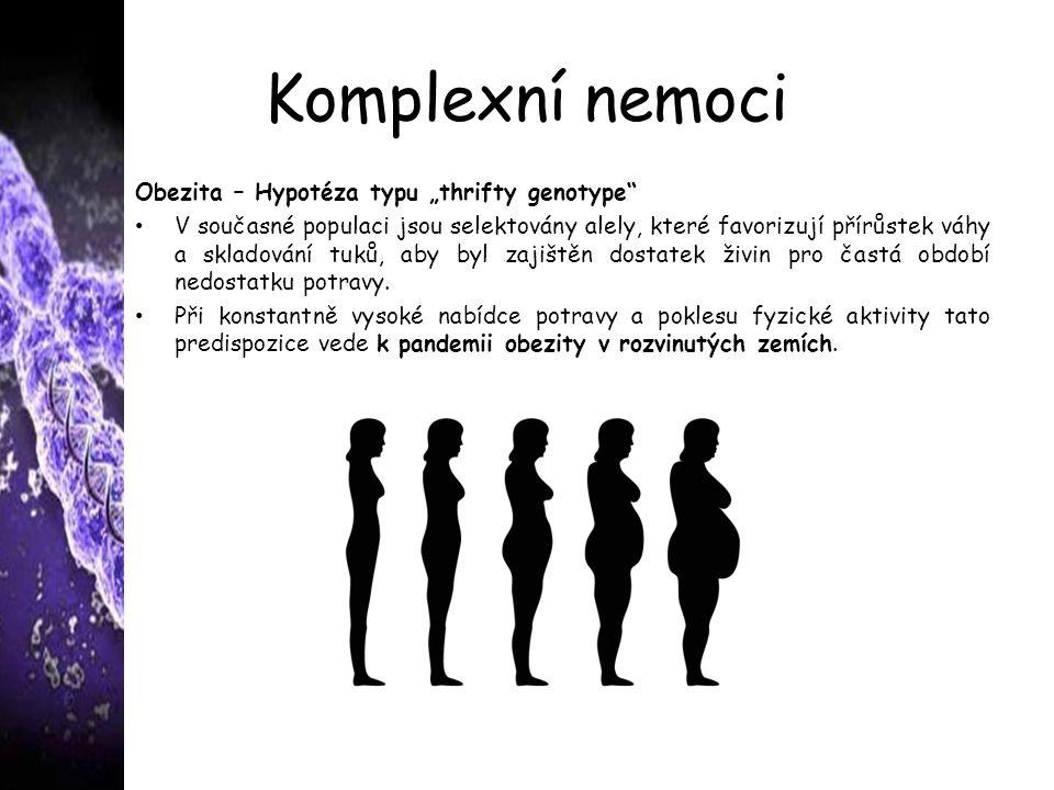 """Komplexní nemoci Obezita – Hypotéza typu """"thrifty genotype V současné populaci jsou selektovány alely, které favorizují přírůstek váhy a skladování tuků, aby byl zajištěn dostatek živin pro častá období nedostatku potravy."""