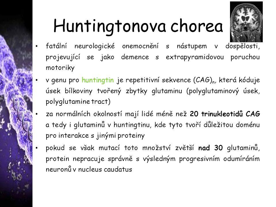 Huntingtonova chorea fatální neurologické onemocnění s nástupem v dospělosti, projevující se jako demence s extrapyramidovou poruchou motoriky v genu pro huntingtin je repetitivní sekvence (CAG) n, která kóduje úsek bílkoviny tvořený zbytky glutaminu (polyglutaminový úsek, polyglutamine tract) za normálních okolností mají lidé méně než 20 trinukleotidů CAG a tedy i glutaminů v huntingtinu, kde tyto tvoří důležitou doménu pro interakce s jinými proteiny pokud se však mutací toto množství zvětší nad 30 glutaminů, protein nepracuje správně s výsledným progresivním odumíráním neuronů v nucleus caudatus choroby