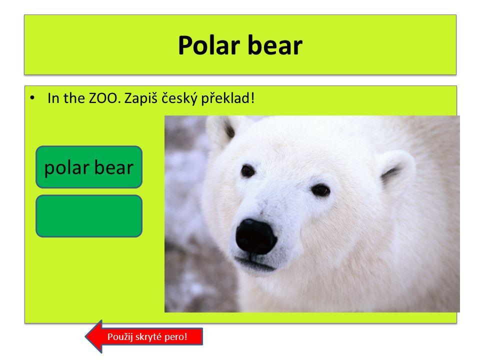 Lion In the ZOO. Zapiš český překlad! Použij skryté pero! lion