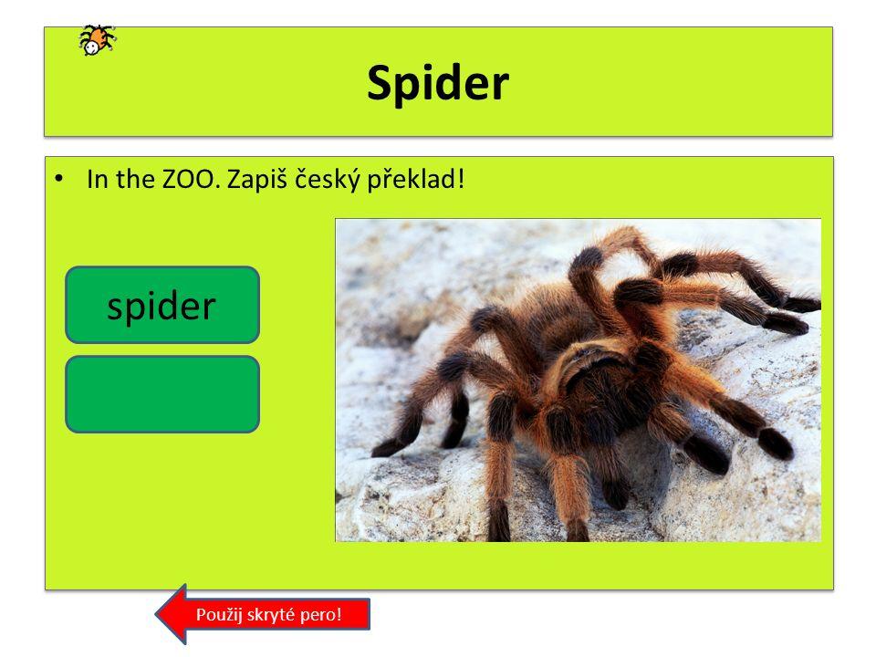 Monkey In the ZOO. Zapiš český překlad! Použij skryté pero! monkey