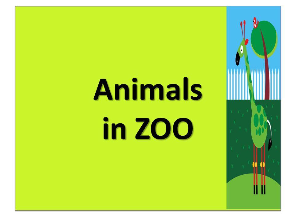 """Anotace Žáci pracují se slovní zásobou k tématu Zvířata v ZOO (""""an elephant , """"a giraffe , """"a tiger , """"a zebra , """"a lion , """"a polar bear , """"a monkey , """"a spider , """"a snake , """"a parrot )."""