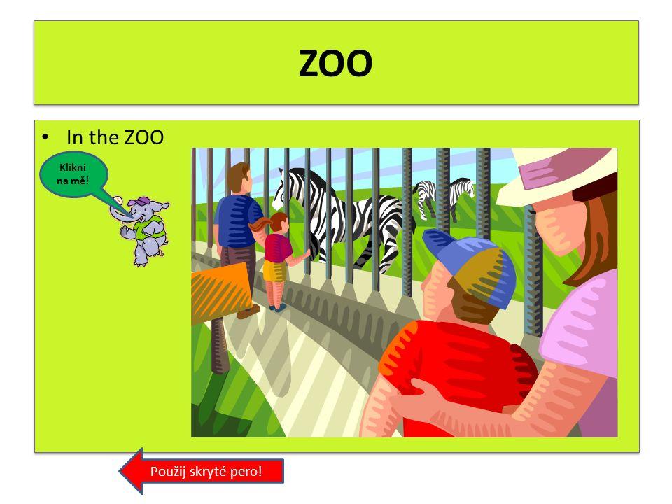 Parrot In the ZOO. Zapiš český překlad! Použij skryté pero! parrot