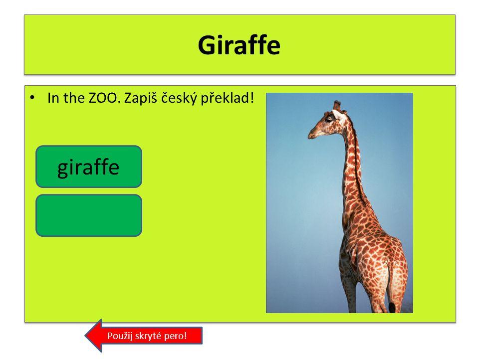 Elephant In the ZOO. Zapiš český překlad! Použij skryté pero! elephant