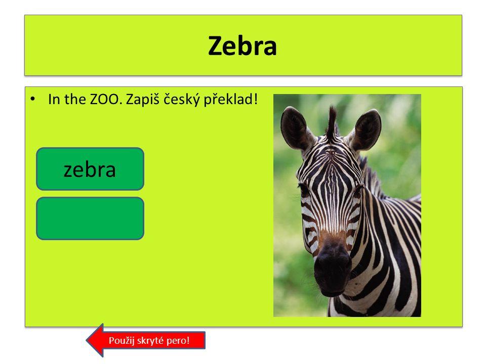Tiger In the ZOO. Zapiš český překlad! Použij skryté pero! tiger
