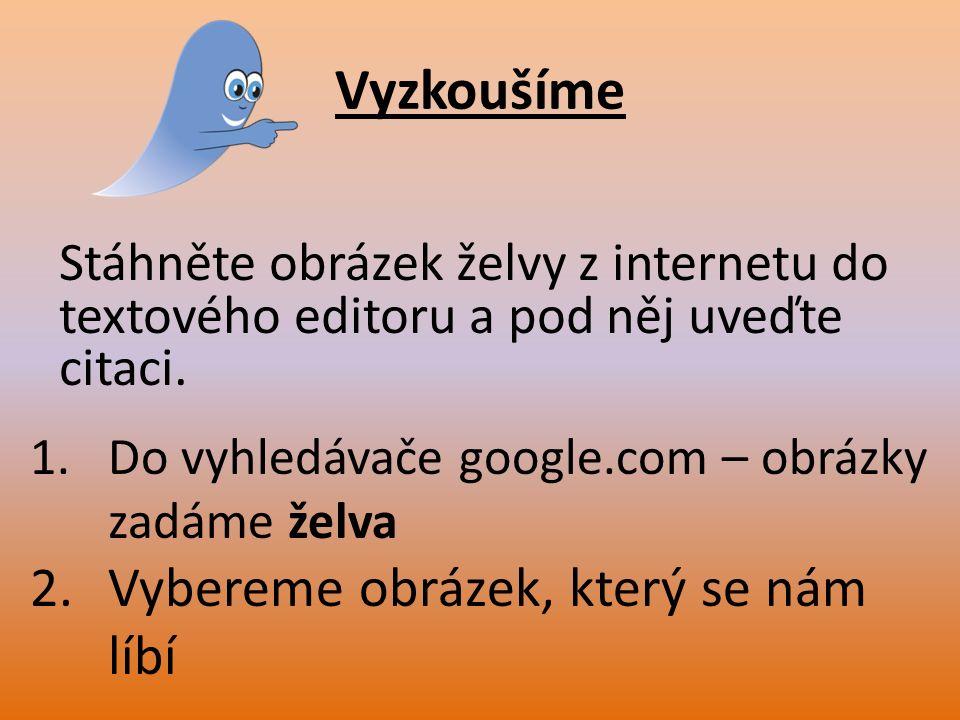 Vyzkoušíme Stáhněte obrázek želvy z internetu do textového editoru a pod něj uveďte citaci. 1.Do vyhledávače google.com – obrázky zadáme želva 2.Vyber