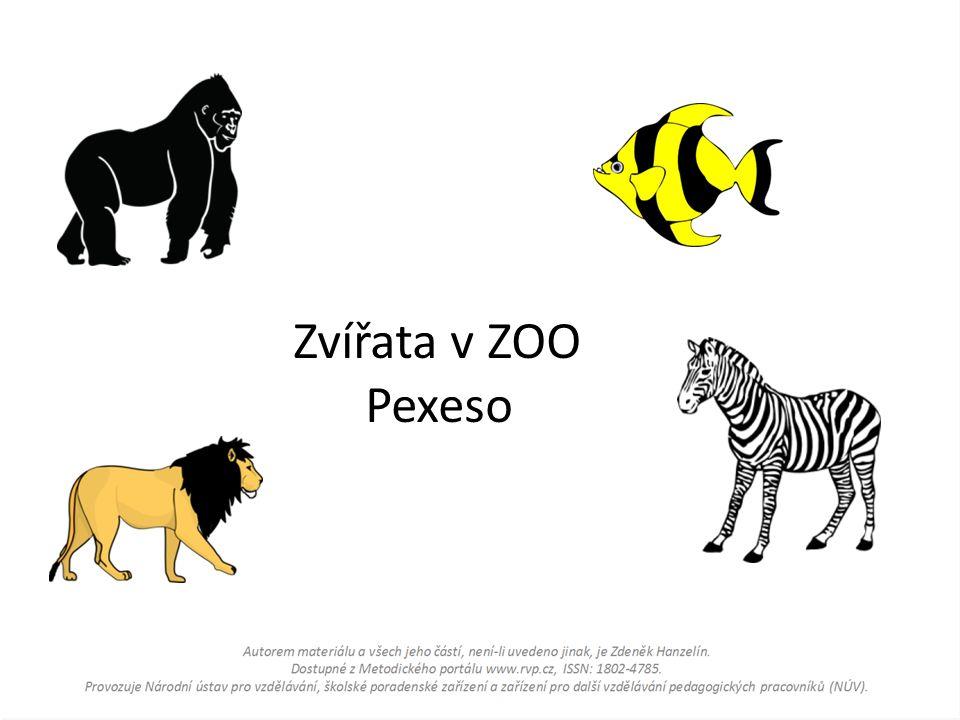 Zvířata v ZOO Pexeso