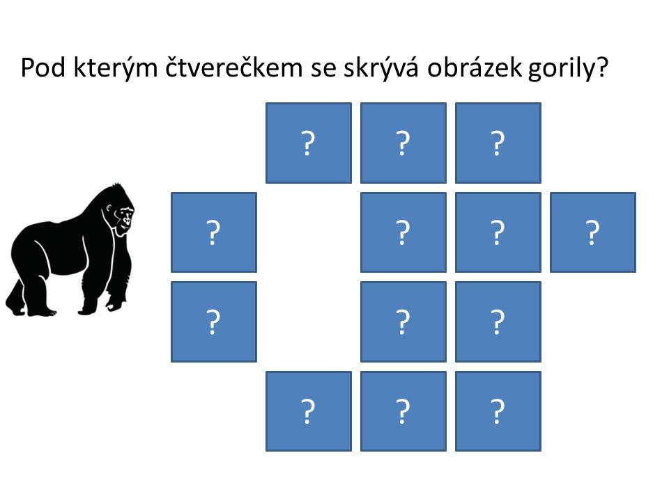 Pod kterým čtverečkem se skrývá obrázek gorily
