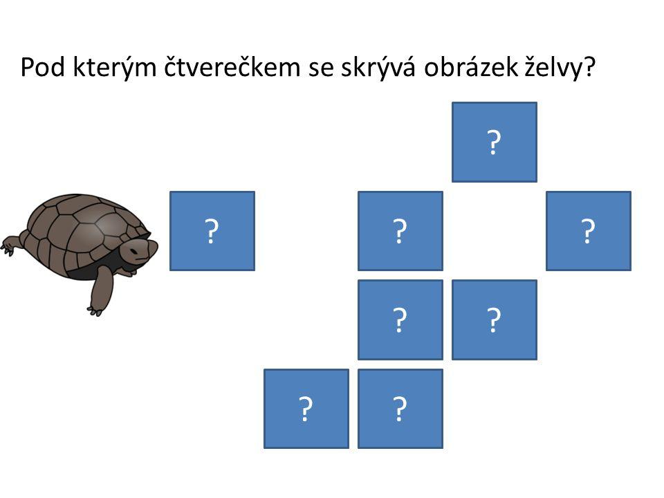 Pod kterým čtverečkem se skrývá obrázek želvy? ? ??? ?? ??