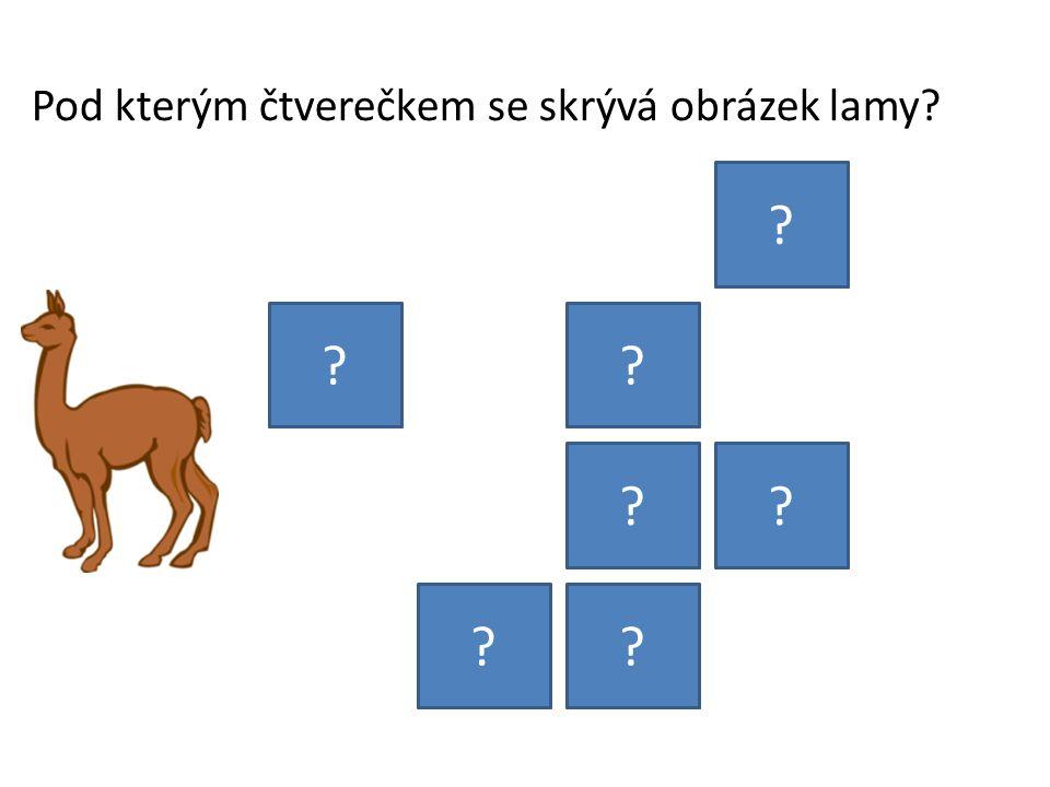 Pod kterým čtverečkem se skrývá obrázek lamy? ? ?? ?? ??