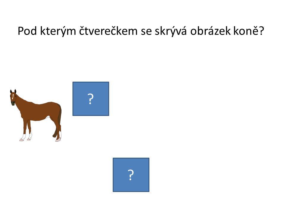Pod kterým čtverečkem se skrývá obrázek koně? ? ?