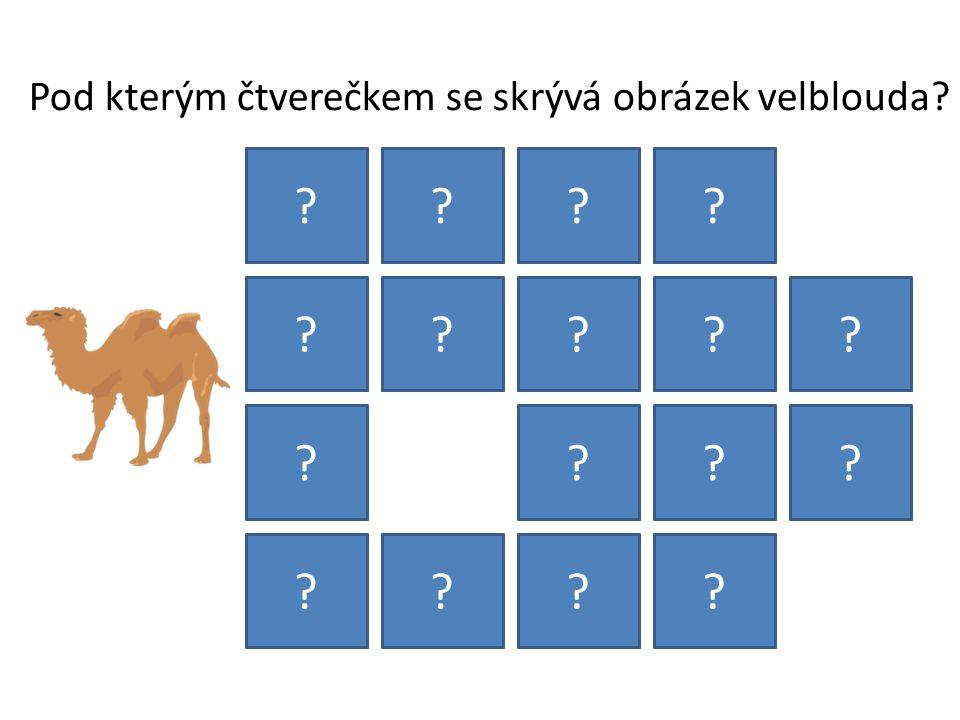 Pod kterým čtverečkem se skrývá obrázek velblouda? ???? ????? ???? ????
