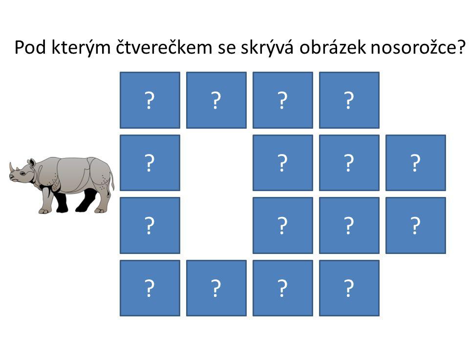 Pod kterým čtverečkem se skrývá obrázek nosorožce