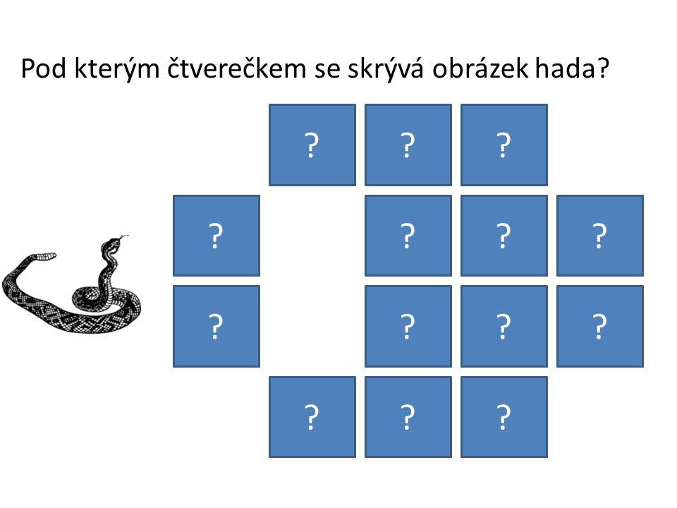 Pod kterým čtverečkem se skrývá obrázek hada? ??? ???? ???? ???
