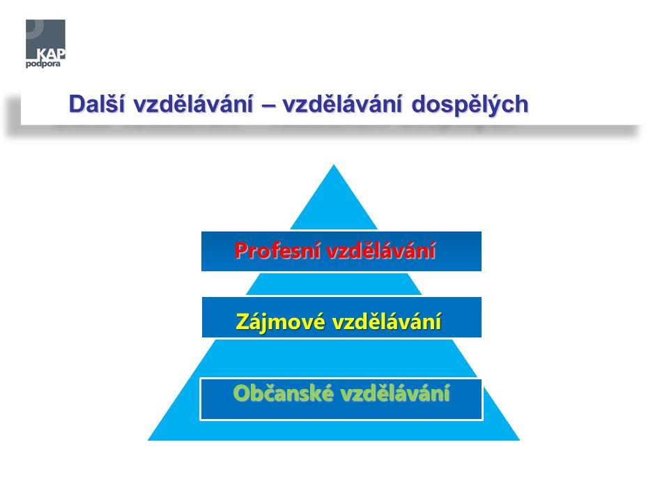 Další vzdělávání – vzdělávání dospělých Profesní vzdělávání Zájmové vzdělávání Občanské vzdělávání