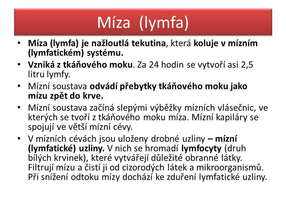 Míza (lymfa) Míza (lymfa) je nažloutlá tekutina, která koluje v mízním (lymfatickém) systému.