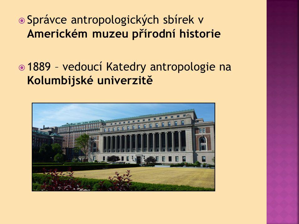  Správce antropologických sbírek v Americkém muzeu přírodní historie  1889 – vedoucí Katedry antropologie na Kolumbijské univerzitě