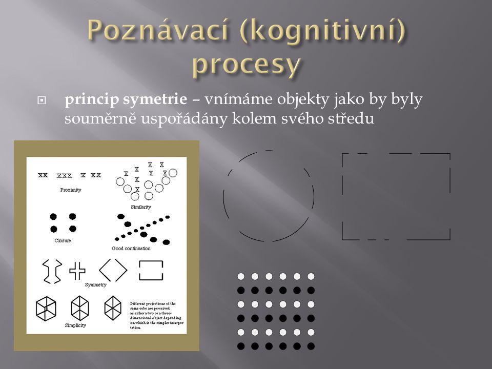  princip symetrie – vnímáme objekty jako by byly souměrně uspořádány kolem svého středu