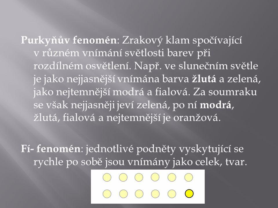 Purkyňův fenomén : Zrakový klam spočívající v různém vnímání světlosti barev při rozdílném osvětlení.