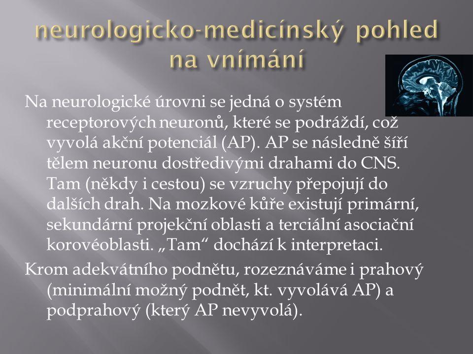 Na neurologické úrovni se jedná o systém receptorových neuronů, které se podráždí, což vyvolá akční potenciál (AP).