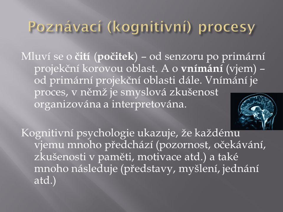 Mluví se o čití ( počitek ) – od senzoru po primární projekční korovou oblast.