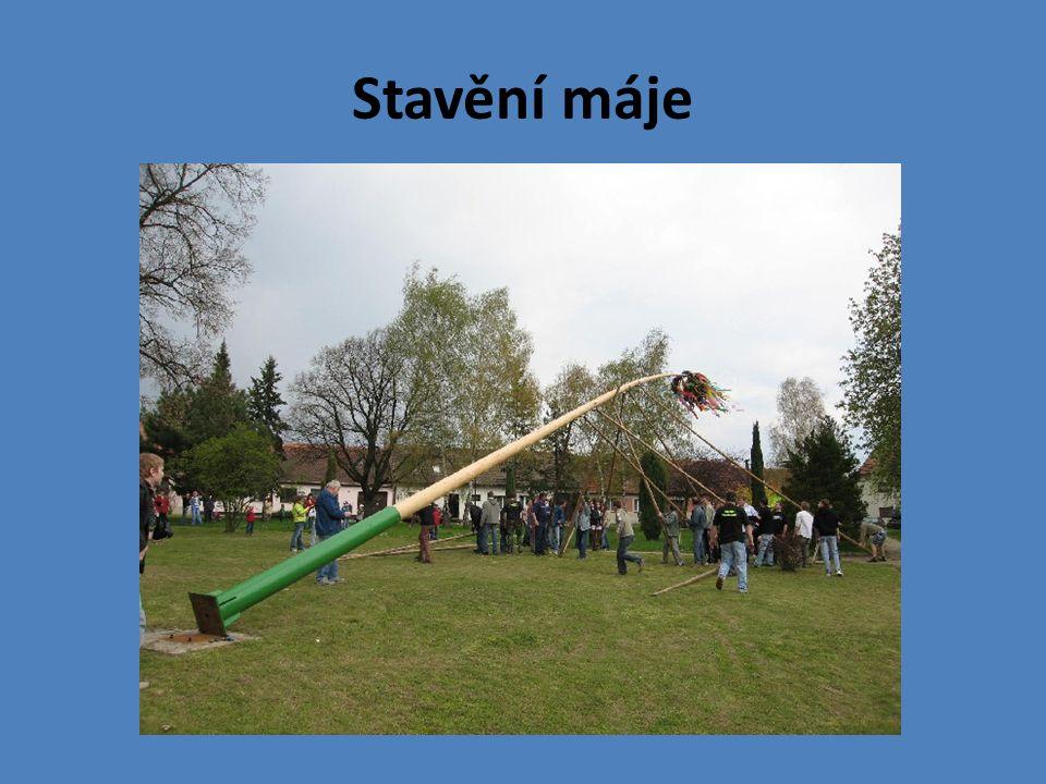 Zvyk stavění máje (ozdobené smrky, borovice nebo jedle) pochází pravděpodobně ze 16.