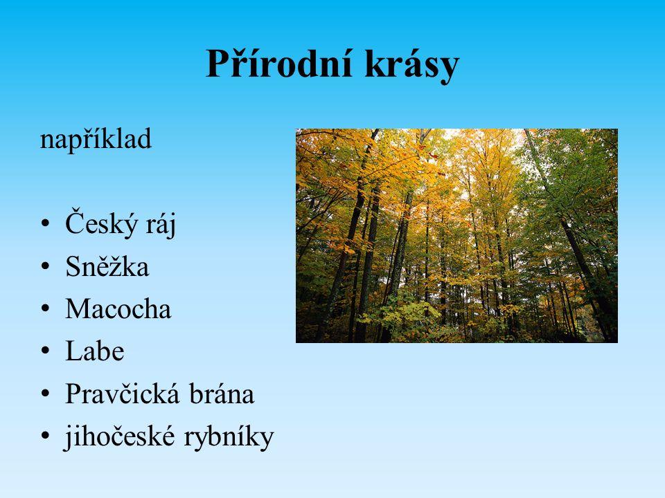 Přírodní krásy například Český ráj Sněžka Macocha Labe Pravčická brána jihočeské rybníky