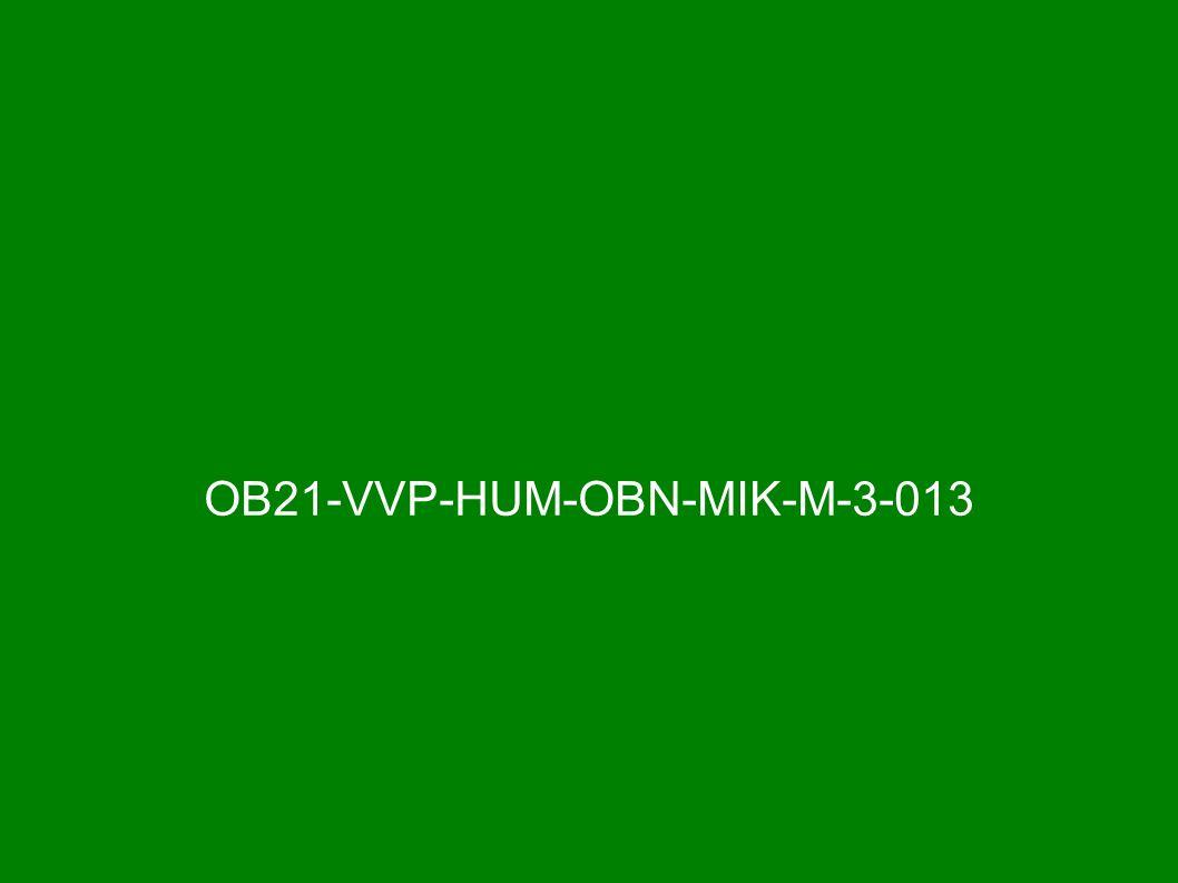 OB21-VVP-HUM-OBN-MIK-M-3-013