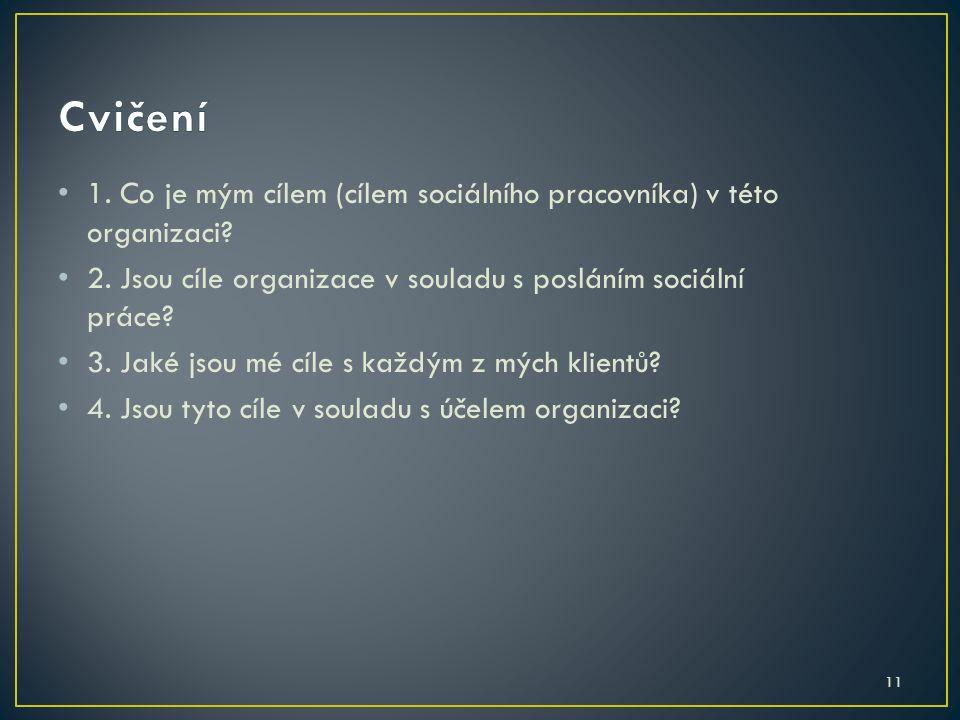 11 1. Co je mým cílem (cílem sociálního pracovníka) v této organizaci? 2. Jsou cíle organizace v souladu s posláním sociální práce? 3. Jaké jsou mé cí