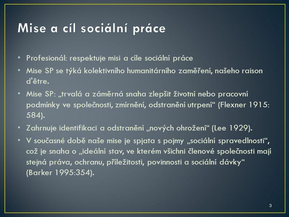 14 Sociální práce je založena na hodnotách demokracie a lidských práv.