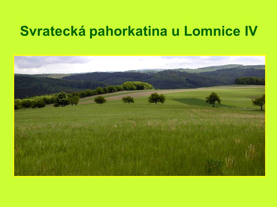 Vesnička Synalov na cestě do Lomnice