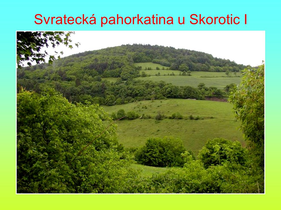 Svratecká pahorkatina u Skorotic I