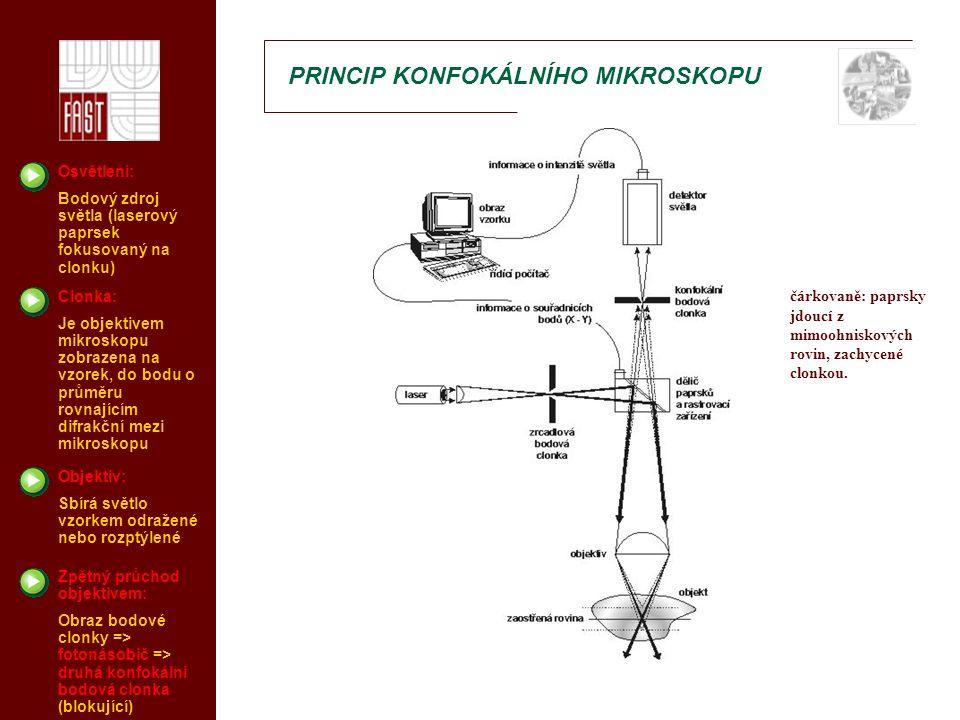 HISTORIE KONFOKÁLNÍ MIKROSKOPIE Marvin Minsky 1957 – patentoval nápad na konfokální mikroskopii, ale nenašel vhodný zdroj světla M.