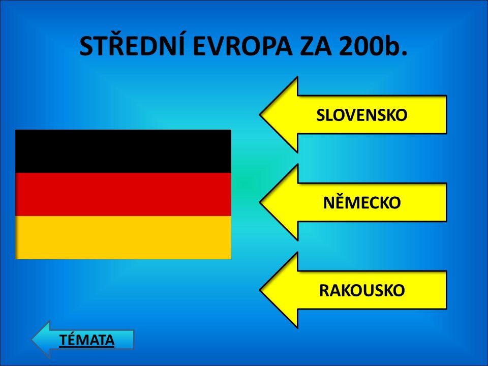 STŘEDNÍ EVROPA ZA 100b. ČESKÁ REPUBLIKA POLSKO SLOVENSKO TÉMATA