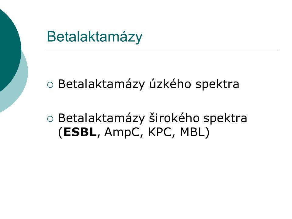Betalaktamázy  Betalaktamázy úzkého spektra  Betalaktamázy širokého spektra (ESBL, AmpC, KPC, MBL)