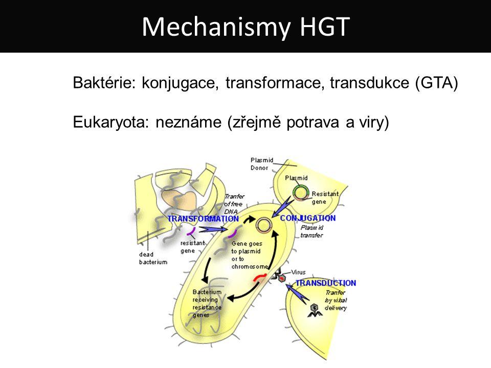 Baktérie: konjugace, transformace, transdukce (GTA) Eukaryota: neznáme (zřejmě potrava a viry) Mechanismy HGT