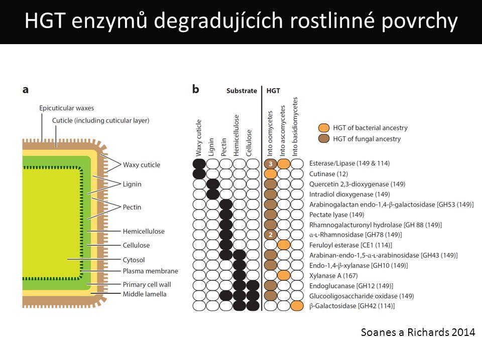 Soanes a Richards 2014 HGT enzymů degradujících rostlinné povrchy