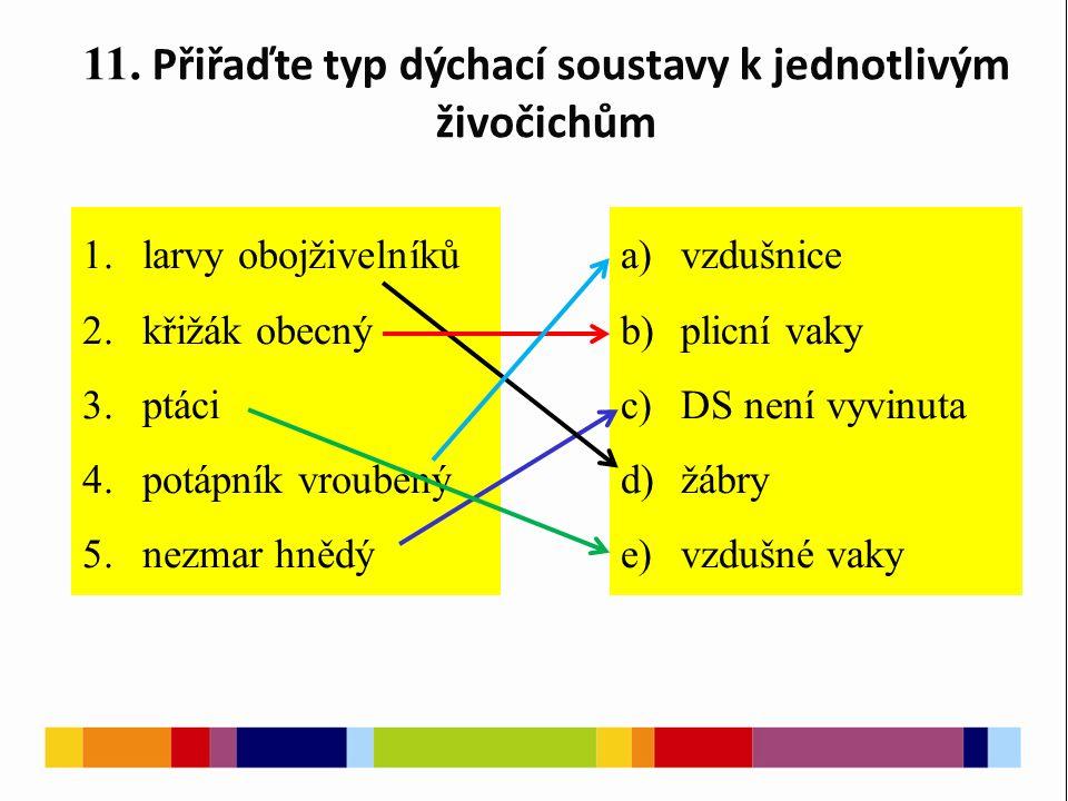11. Přiřaďte typ dýchací soustavy k jednotlivým živočichům 1.larvy obojživelníků 2.křižák obecný 3.ptáci 4.potápník vroubený 5.nezmar hnědý a)vzdušnic
