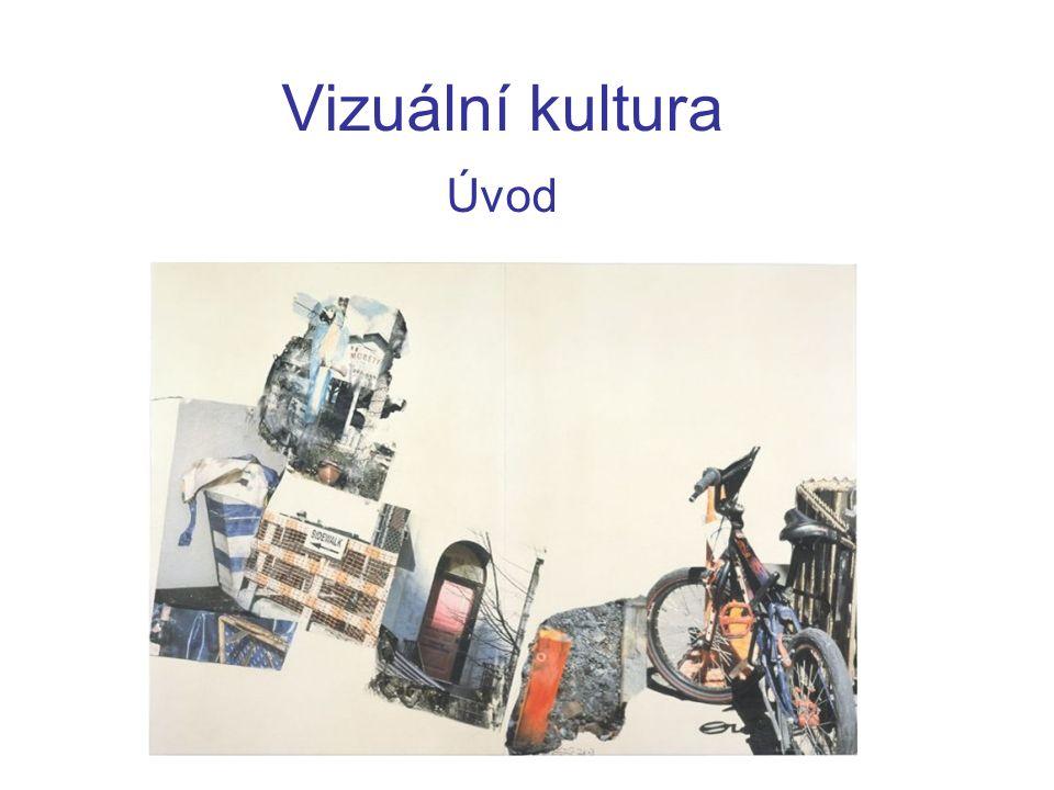 Vizuální kultura Úvod