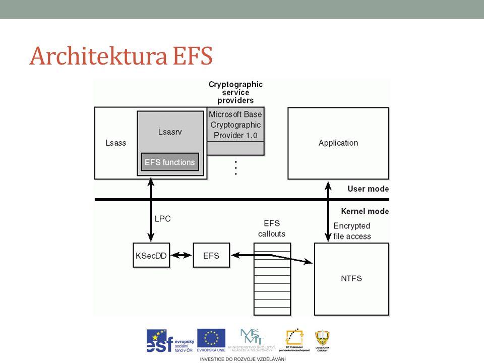 Architektura EFS